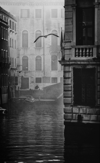 Photographer: Ando Fuchs