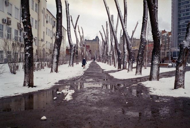 Anton Novoselov © All rights reserved
